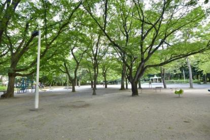 練馬区立大泉公園の画像2