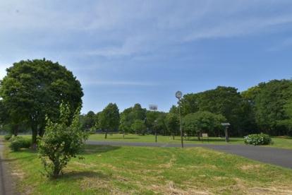 都立城北中央公園の画像1