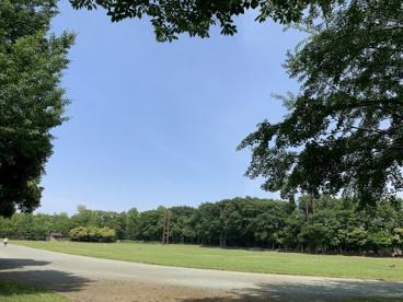 都立城北中央公園の画像3