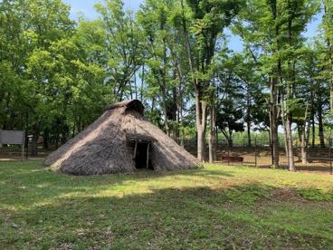 都立城北中央公園の画像4