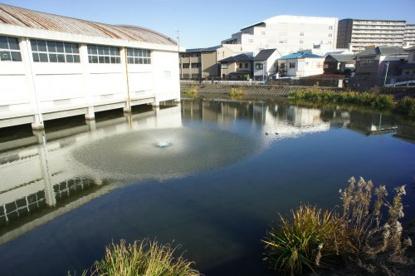 池に浮遊する体育館‥の画像4