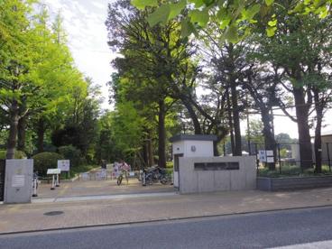 石神井松の風文化公園の画像1
