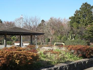 松ケ丘緑地の画像1