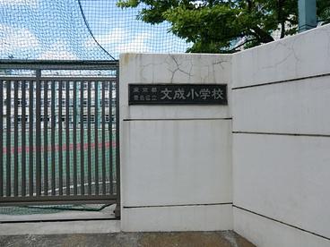 豊島区立文成小学校の画像1