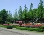 四季の香公園