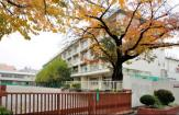 練馬区立石神井東中学校