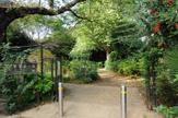 十条野鳥の森緑地