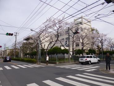 新浜小学校の画像1