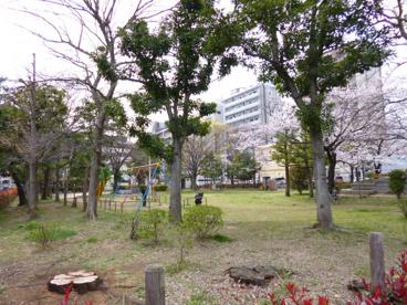 南根公園の画像1