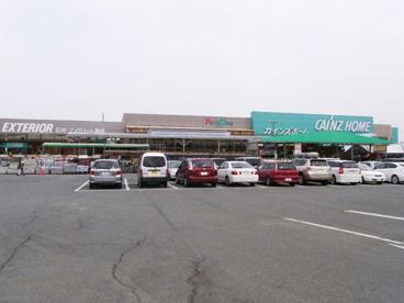 カインズホームFC高崎東部店の画像1