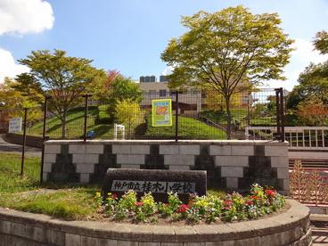 神戸市立桂木小学校の画像1