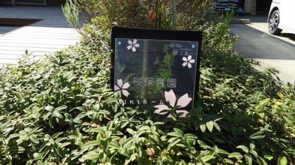 桜保育園の画像4