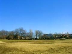 練馬区立立野公園の画像4