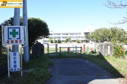 茂原市立西小学校の画像1