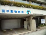 田中動物病院