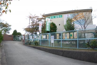 香陽小学校の画像1