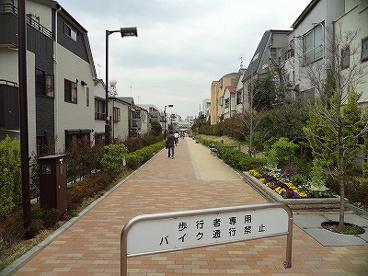 品川区西小山緑道の画像1