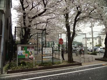 区立荏三公園の画像1