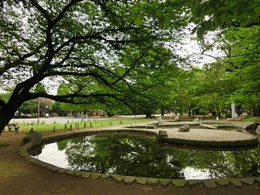 板橋区平和公園の画像1