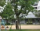 松川幼稚園の画像1
