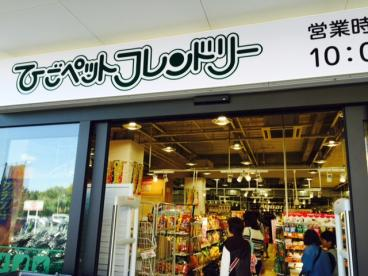 ひごペットフレンドリー イズミヤ千里丘店の画像1