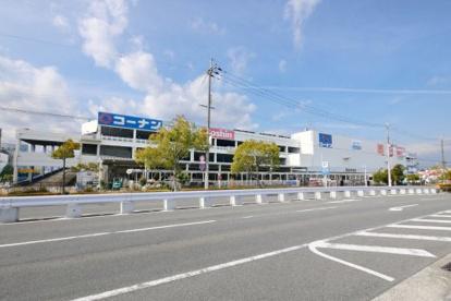 ホームセンターコーナン・西宮今津店の画像2