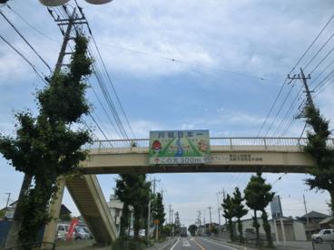 川幅日本一の画像4