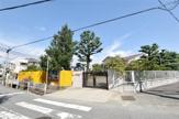 甲武幼稚園