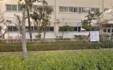 葛飾学園上千葉学童保育クラブ