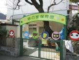 緑の家保育園
