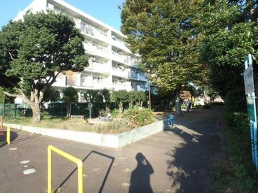 野川けやき公園の画像1