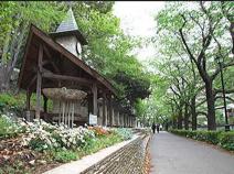 文京区立江戸川公園