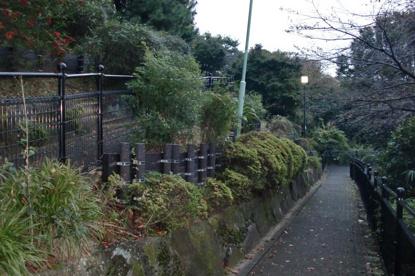 西郷山公園の画像4