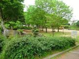 美しの森公園