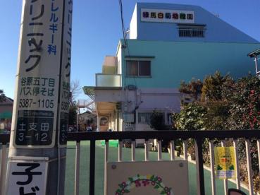 練馬白菊幼稚園の画像1