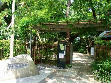 牧野記念庭園の画像2