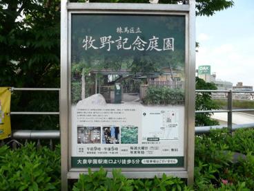 牧野記念庭園の画像4