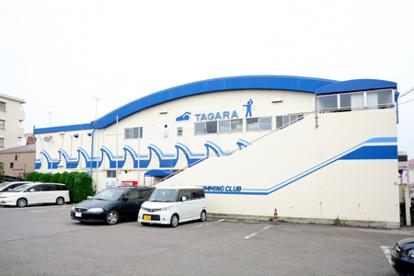 田柄スイミングクラブの画像1