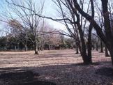 都立和田堀川公園