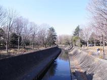 東京都善福寺川緑地
