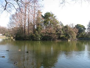 武蔵関公園の画像3