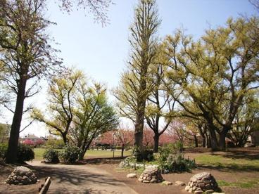 立野公園の画像2
