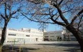 杉並区立 松ノ木小学校