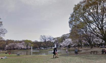 代々木公園の画像1