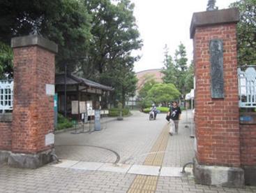 東京芸術大学 上野キャンパスの画像1
