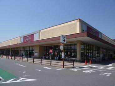 デイリーカナートイズミヤ桂坂店の画像1
