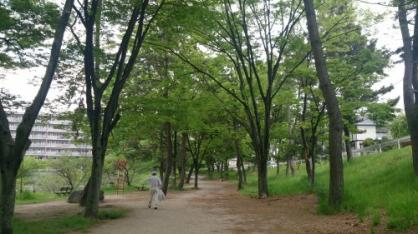 桃山公園の画像2