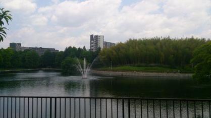 桃山公園の画像3
