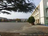 新城小学校