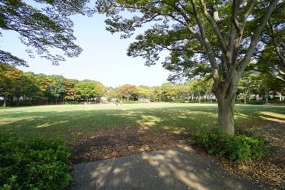 おゆみ野 なつのみち公園の画像1